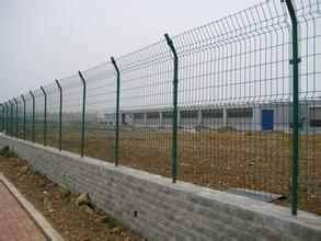 养鸡护栏网