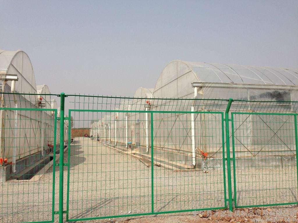 种植大棚铁丝网围栏