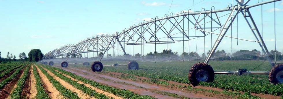 灌溉设备配套使用的河北抖咪直播专用减速机专用齿轮箱