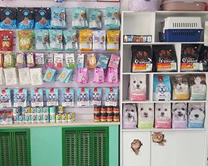 石家庄宠物诊所